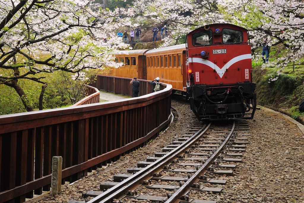 Beyond Taipei: The Alishan Forest Railway