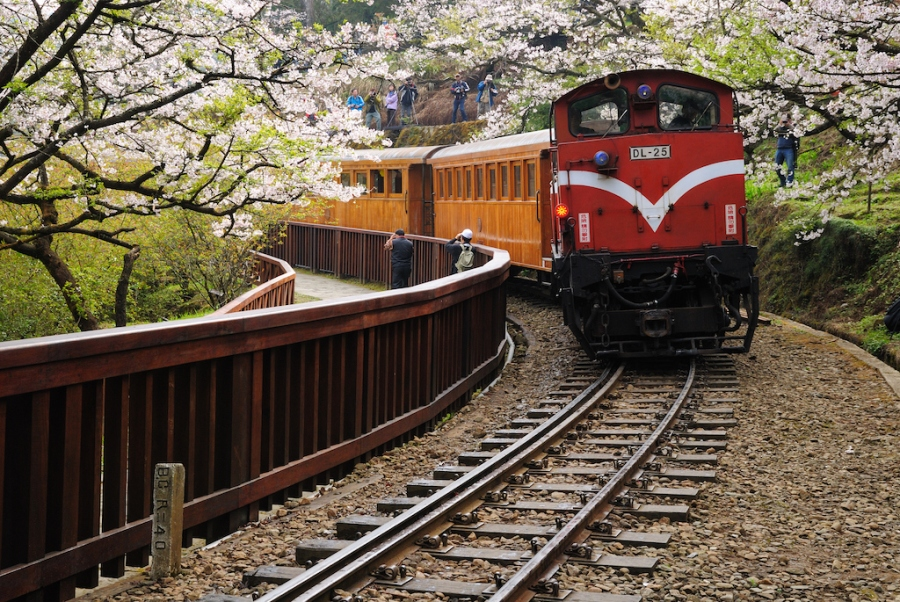 Beyond Taipei: The Alishan Forest Railway